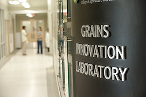 Picture of Grains Innovation Lab