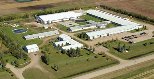Picture of Prairie Swine Centre