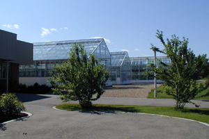Picture of Agriculture Greenhouses